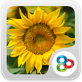 Sunflower Sm_Dev Go Launcher