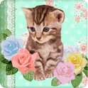 Lovely Cat Live Wallpaper icon