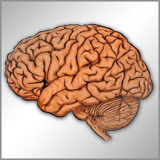 Neurologia en preguntas cortas LOGO-APP點子