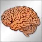 Neurologia en preguntas cortas icon