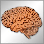 Neurologia en preguntas cortas