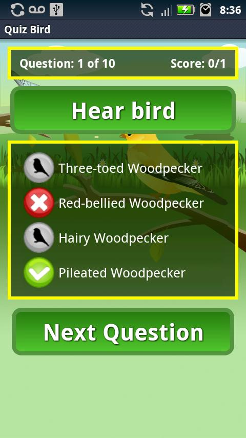 Quiz Bird Free- screenshot