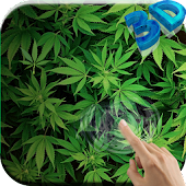 Marijuana 3D Live Wallpaper HD