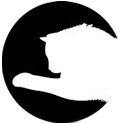 Simple cat toy laser icon