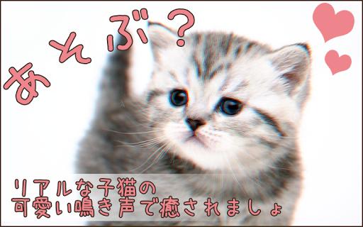 猫育成キット★無料でかわいいねこちゃんと遊べるゲーム※音声付