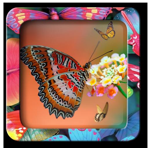 蝴蝶相框編輯器 攝影 App LOGO-硬是要APP