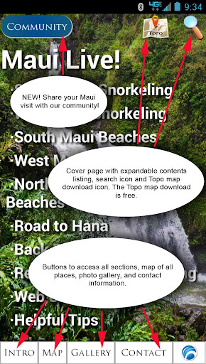 Maui Live