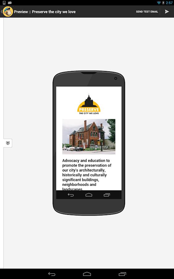 MailChimp Editor - screenshot