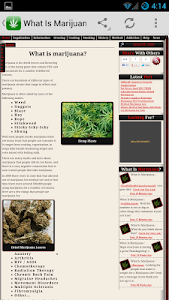 What Is Marijuana - Weed Facts screenshot 1
