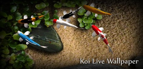 Koi Live Wallpaper - Android Mobile Analytics and App Store Data