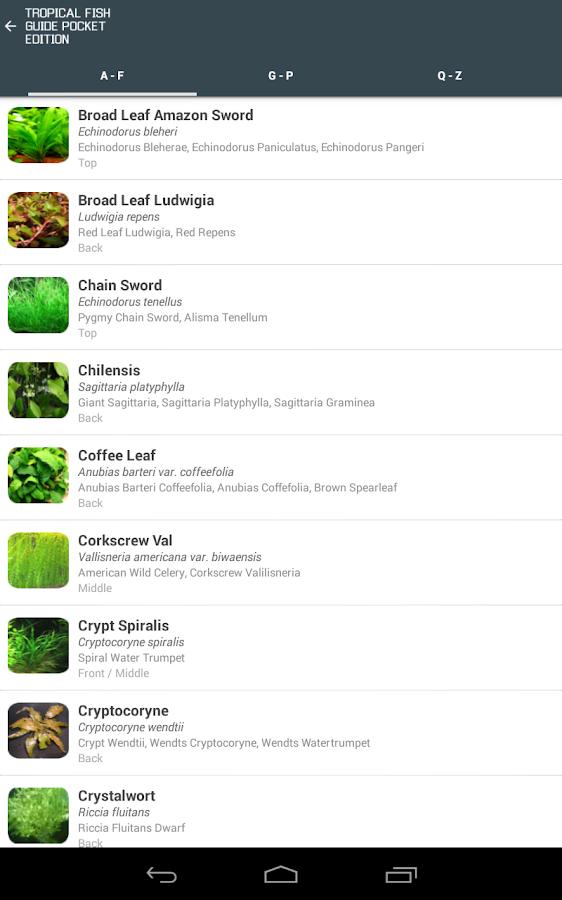 Tropical Fish Guide Pocket Ed. - screenshot