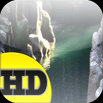 The River Gulch HD Live Wallpa