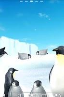 Screenshot of Penguin Live Wallpaper Trial