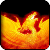 Fire Dragons Wallpapers