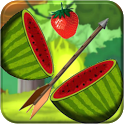 Fruit Splash Archery icon
