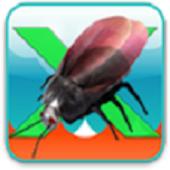 x-beetle2