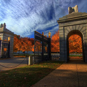 Arlington National Cemetery by Michael McMurray - Landscapes Travel ( arlington, relax, orange leaves, quiet, relaxing, gate, tranquil, #garyfongdramaticlight, #wtfbobdavis, blue sky, arlington national cemetery, autumn, foliage, peace, tranquility )