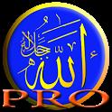 PRO اتجاه القبلة Qibla icon