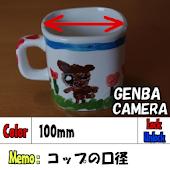 Fieldwork camera