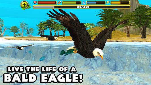 Eagle Simulator v1.0