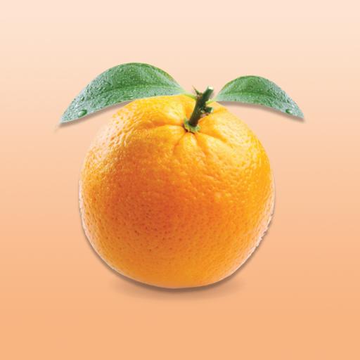 大橙报Big Orange Media LOGO-APP點子