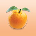 大橙报Big Orange Media icon