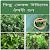 Herbal Plant Medicine (Bangla) file APK for Gaming PC/PS3/PS4 Smart TV