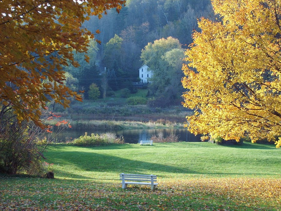 Housatonic River - Berkshires, MA by Nancy Jenkinson - Uncategorized All Uncategorized