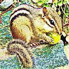 Chipmunk Sound Effect icon