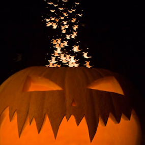 Witches Spout by Danielle Falknor - Artistic Objects Other Objects ( pumpkin, witches, halloween photography, bokeh, halloween, carved )