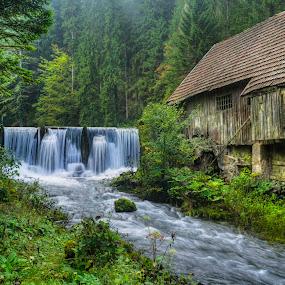The Old Mill by Siniša Biljan - Landscapes Travel (  )