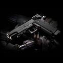 Wonderful Handgun Wallpaper icon