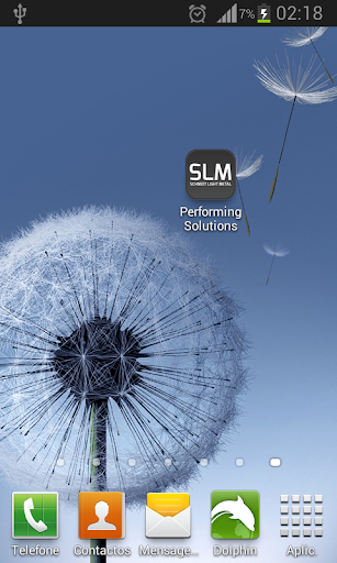 SLM - Performing Solutions