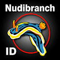 Nudibranch ID Indo Pacific icon