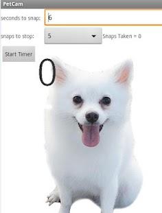 玩媒體與影片App|Pet Camera免費|APP試玩