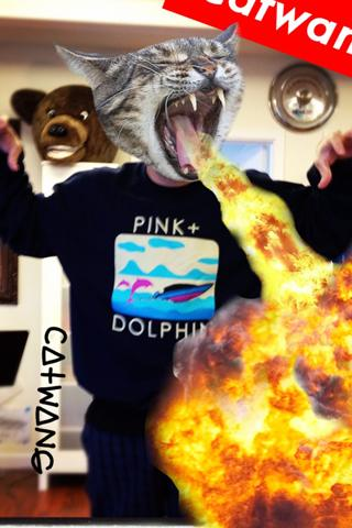 Catwang - screenshot