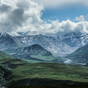 Denali National Park, Alaska by Tracy Riedel-Dorsch - Landscapes Mountains & Hills ( park scene, alaska, national parks, denali national park, travel photography )