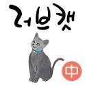 러브캣 중권 icon