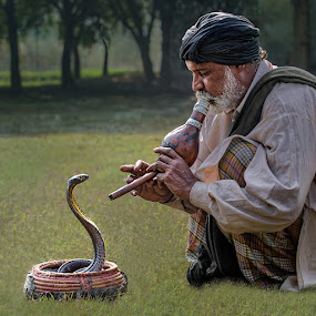 Cobra And Man by Nayyer Reza - People Street & Candids