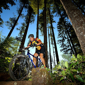 Under The Canopy by Gary Piazza - Sports & Fitness Cycling ( washington, mountain biking, trails, Bicycle, Sport, Transportation, Cycle, Bike, ResourceMagazine, Outdoors, Exercise, Two Wheels )