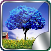 3D Trees Live Wallpaper