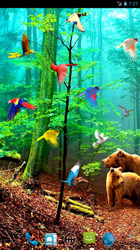 Forest Birds Live Wallpaper
