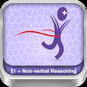 11+ Non Verbal Reasoning