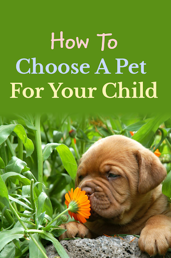 Choosing a Pet For Your Child