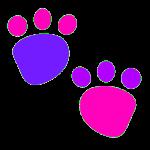 Educational Kids Animal Tracks