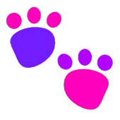 Educational Kids Animal Tracks