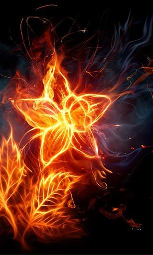 Fire Flowers HD wallpapers