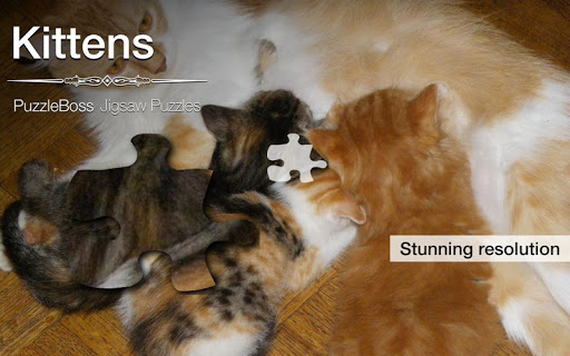 Kitten Jigsaw Puzzles Demo