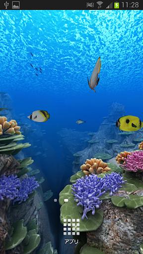 慶良間の珊瑚HD