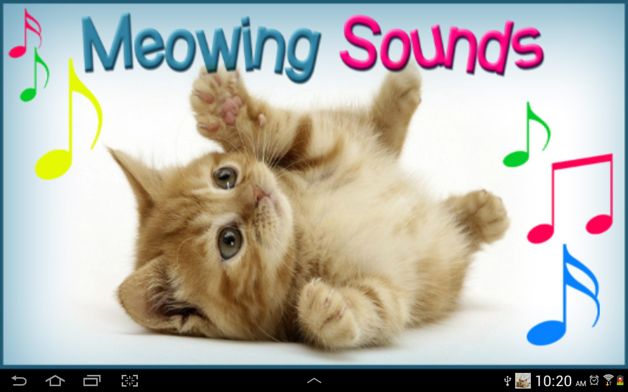 Toques de gato apps para android no google play for Gatto miagola sempre